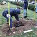 Ayrsley_Tree_Planting_2019_ (52)