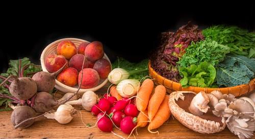 nutritionprograms nutritionprogramslondon weight loss program Weight Loss Program 47234214682 03b475fcaf