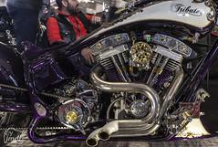 "Tribute_MotoMadrid_069 (byJMdF) Tags: artesanía cordobesa custom bikes motorcycle moto motocicleta ""craftwork cordobese"" craftwork artesania salón motomadrid 2019 salónmotomadrid2019 harley davidson softail 1340 1995 harleydavidsonsoftail1340 harleydavidsonsoftail13401995 hdsoftail13401995 hd motomadrid2019"