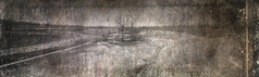 Dead Island (Jeff Wild) Tags: holga holga120wpc pinhole filmphotography filmisnotdead toycamera
