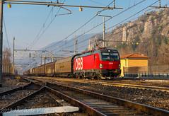1293 007 (atropo8 - fb.me/maniallospecchio) Tags: 1293007 obb brennerbahn güterzug rcci railcargocarrieritalia train treno zug merci freight cargo verona veneto italy railways nikon d810 vectron siemens loco