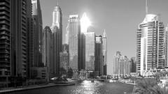 Rayon (pi3rreo) Tags: nikon coolpix dubai uae urbanscape urbain urban ville city immeubles skyscraper noiretblanc black white sun solail marina eau water hauteur high