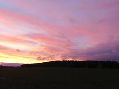 ----Pastell auf der andren Seite.... (elisabeth.mcghee) Tags: abendrot abendhimmel abendsonne sunset sonnenuntergang himmel sky wolken clouds unterbibrach bäume trees wald forest oberpfalz upper palatinate