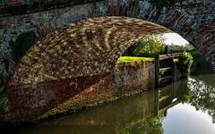 Summer Reflections (daveknight1946) Tags: essex beeleigh bridge water river reflection mr