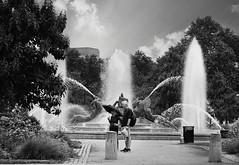 R1-068-32A (David Swift Photography) Tags: davidswiftphotography philadelphia centercityphiladelphia logancirclephilapa fountains sculpture publicart water historicphiladelphia historicplaces sculptures streetphotography swanfountainphilapa
