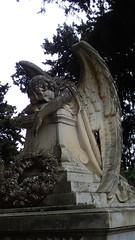 Grieving Angel (david_m.hn) Tags: italien italy sizilien sicily statue engel angel friedhof cemetary outdoor necopolis nekropole