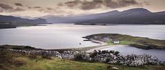 L'habitant de la presqu'île du Loch (JardinsLeeds) Tags: loch scotland scottishlandscape paysageécosse écosse paysage landscape mountains montagnes nikond800e
