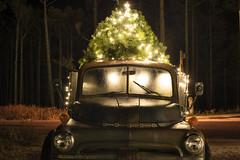 Dodge (Curtis Gregory Perry) Tags: seabrook washington dodge pickup truck 1952 night christmas tree light nikon d810