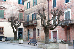 Pozzuolo (phacelias) Tags: trees alberi bomen streetphotography straat via strada houses case huizen panchine benches bankjes