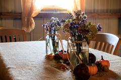 Burlap Tablecloth (Robert F. Carter) Tags: autumncolors fall fallcolors michigan october autumn alanson unitedstates us burlap burlaptablecloth pumpkins flowers table chairs tables tableandchairs cidermill cidermills