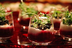 Goat cheese mousse with beets cream. (corineouellet) Tags: focus chef cook cooking canonphoto canon appetizer delicious delish plating tasty good yummy yumyum foodies foodie food betteraves beets goatcheese cheese verrine
