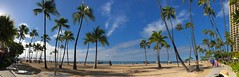 Pano: Morning view of Waikiki Beach (peggyhr) Tags: peggyhr panorama coconuttrees beach ocean bluesky green golden iphone waikikibeach hawaii thegalaxy thegalaxylevel2 thegalaxyhalloffame