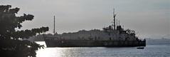 David & Goliath (Ruby Ferreira ®) Tags: ship boat barco navio branches bay baía silhuetas silhouettes montains montanhas