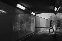 (Streets and Shadow) Tags: wellington wellingtonnz wgtn fujifilmxseries fujifilm fujifilmnz fujifilmstreet xseries xt2 street streetphotography streetphotographer streets nz newzealand