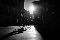 biking (Rien van Voorst) Tags: streetphotography straatfotografie strasenfotografie fotografíacallejera photographiederue fotografiadistrada monochrome city urban highcontrast nederland dutch thenetherlands paysbas niederlände backlight tegenlicht schatten shadow schaduw fiets bike fahrrad silhouette