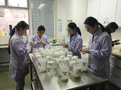 IMG_0641 (Animals Asia) Tags: animalsasia china cbrc chengdu chinabearrescuecentre vet training