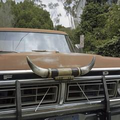 F horn D (ADMurr) Tags: la hollywood hills horned pickup ford toro rolleiflex e 35 zeiss planar kodak ektar dab884
