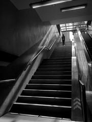 steps. (christianpaulbana) Tags: makati stairs blackandwhite streetphotography