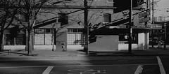 Street - Film Hasselblad (Photo Alan) Tags: vancouver canada blackwhite blackandwhite monochrome shadow shadowplay chinatown street streetphotography film filmcamera filmscan filmhasselblad hasselblad hasselbladxpan