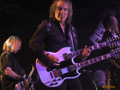 Bm - Dave Amato of REO Speedwagon (Pete Foley) Tags: reospeedwagon daveamato guitarist raidingtherockvault lasvegas nevada whyimovedtovegas flickrsbest overtheexcellence