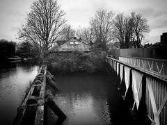 Johnson's Island, Brentford (dominicirons) Tags: brentford westlondon canal riverbrent grandunioncanal johnsonsisland blackwhite blackandwhite