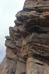 Cliffs,Collieston_Mar 19_449 (Alan Longmuir.) Tags: grampian aberdeenshire collieston cliffs