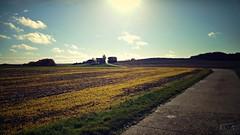 Mainfränkische Landschaft bei der Sternwarte Hettstadt (Maquarius) Tags: landschaft mainfranken unterfranken franken hettstadt sternwarte weg gegenlicht sonne