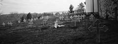 Graveyard, Abbey of Gethsemani, Kentucky (bclook) Tags: abbeyofgethsemani xpan panorama filmisnotdead istillshootfilm 35mm hasselbladxpan analog kodaktrix selfdeveloped bwfp