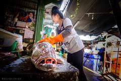 Fishy business (Goran Bangkok) Tags: chinatown fish food market wetmarket woman bangkok thailand commercial girl preparing worker happyplanet asiafavorites