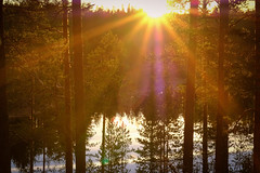 Sunset by the pond (Klas-Herman Lundgren) Tags: dalarna sweden gimmen autumn höst forest trees skog october red leaves colors ground skogsmark tjärn porstjärn pond myrmark sunset sun light solnedgång sifferbo se