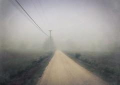 Road in the fog (lydiacassatt) Tags: maine fog hipstamatic