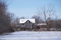 Old Barn (Toats Master) Tags: winter snow barn landscape field