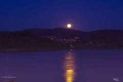 Noche muy Lunar...!!! (Camelia-5) Tags: coruña noche agua luna