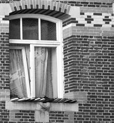 Au pied de la fenêtre (BenoitGEETS-Photography) Tags: cprb sony a6000 bn bw bruxelles brussels noiretblanc nb streetphoto fenêtre windows chaussures chaussure shoes