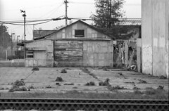 2019-03-04-0017 (ThroopD) Tags: filmscan filmchemistry f2 expiredfilm expiredfilmchemistry expiredd76 concreteslab railtrackssmarttrain monochrome unmonochrome autodevelop envelope pumpdontworkcuzthevandalstookthehandle weed