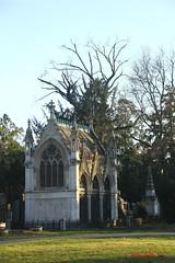 IMG_8561 (Pfluegl) Tags: wien vienna zentralfriedhof graveyard europe eu europa österreich austria chpfluegl chpflügl christian pflügl pfluegl spring frühling simmering