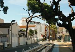 IMG_9502-1 (maria.urman) Tags: platja daro spain españa cataluña costa brava