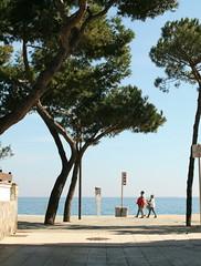 IMG_9493-1 (maria.urman) Tags: platja daro spain españa cataluña costa brava