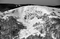 Le Rainkopf (Alt : 1305m) (Philippe Haumesser (+ 8000 000 view)) Tags: winter hiver snow nature paysage paysages landscape landscapes montagne montagnes mountain mountains ciel sky vosges alsace hautrhin 68 nikond7000 nikon d7000 reflex 2019 neige hautesvosges panorama panoramique nuages clouds forêt forêts forest forests rainkopf