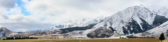 high plains autumn in New Zealand__ (Ardan⋆) Tags: autumn newzealand mountain plains landscape landscapephotography landforms shades clouds cloudscape white misty farm paddocks trees grass soil nature naturelover textures patterns naturephotography travel travelling travelphotography outside ontheroad road