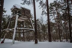 IMG_8775_edit (SPihtelev) Tags: ладога ленинградская область эхо войны берег ладоги озеро зима ladoga