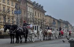IMG_2956 (miroslawdz) Tags: krakow poland rynek dorozki kosciol mariacki