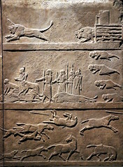 The Assyrian Royal Hunt (calmeilles) Tags: london england unitedkingdom ashurbanipal britishmuseum middleeast nineveh