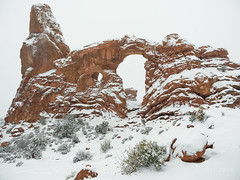 Turret Arch Snowstorm (xjblue) Tags: 2018 archesnationalpark newyearsweekend southernutah utah canyon canyonlands cold desert governmentshutdown sandstone snow trip winter naturalarch natural span
