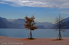Lago di Garda by Campagnola (El Greco Travelphotography) Tags: italy travel autumn pentax pentaxk50 landscape view nature beach lagodigarda lake trees water hill mountains veneto sky clouds