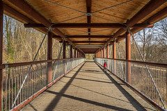 2019 Bike 180: Day 41, March 22 (suzanne~) Tags: 2019bike180 bike munich germany bavaria isar bridge river fence