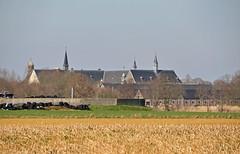 2019 België 0032 Achel (porochelt) Tags: achel belgië b limburg belgium belgien belgique bélgica
