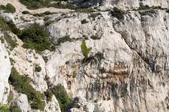 Rocher Saint-Michel (Bernard Ddd) Tags: rochersaintmichel marseilleveyre kn557 dakota marseille croixcommémorative crash 15janvier1946 têtedelamounine bouchesdurhône france fr