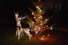DSC_4872 (earthdog) Tags: 2018 needstags needstitle nikon nikond5600 d5600 18300mmf3563 christmas decoration light christmaslight sanjose willowglen