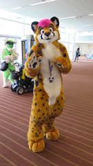 Ferian (Coyoty) Tags: anthrocon2015 davidllawrenceconventioncenter pittsburgh pennsylvania pa convention anthrocon anthropomorphics anthropomorphic furry fandom fun fursuit furries furryfandom mascot costumes cosplay cheetah ferian spotted orange green magenta stripes color people
